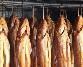 varmrøgning af fisk